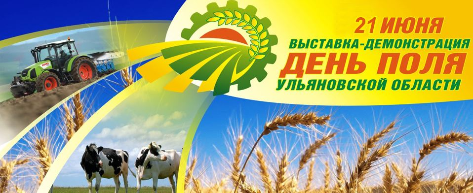 День поля-2015 состоялся в Ульяновске