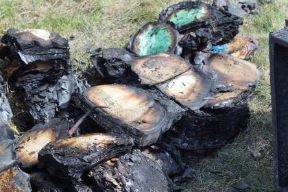 храм в прислонихе сгорел кременицкий -4