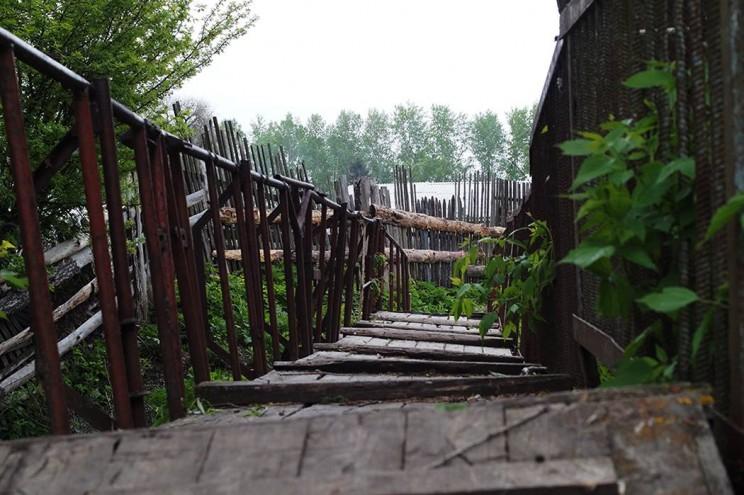 Деревенская жизнь Кременицкий 22 мая 2016-14