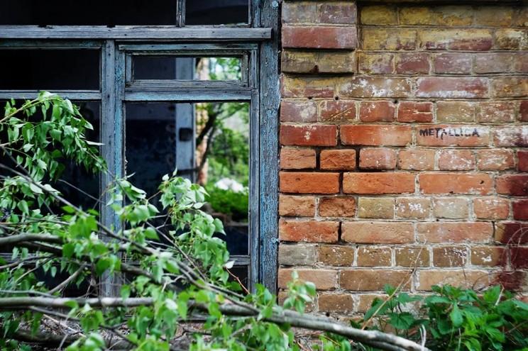 Деревенская жизнь Кременицкий 22 мая 2016-16