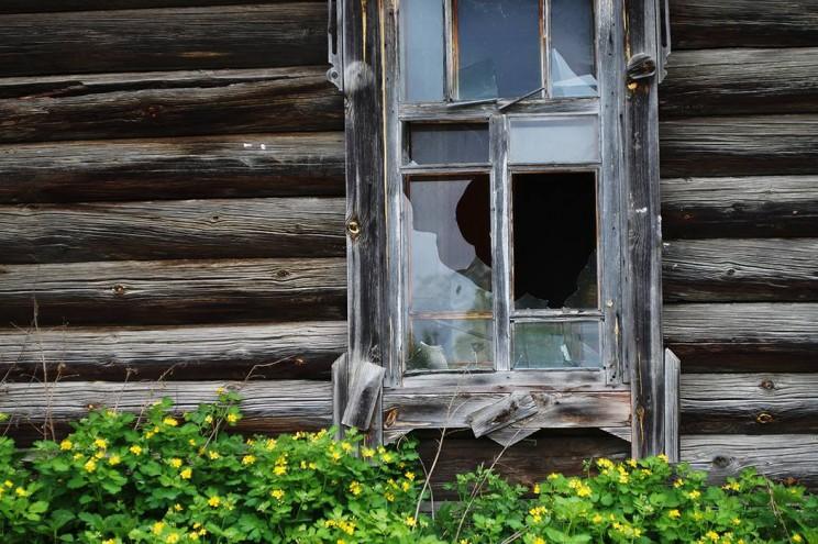 Деревенская жизнь Кременицкий 22 мая 2016-17