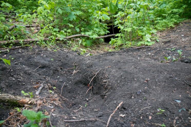У второго склепа все перекопано «черными археологами».