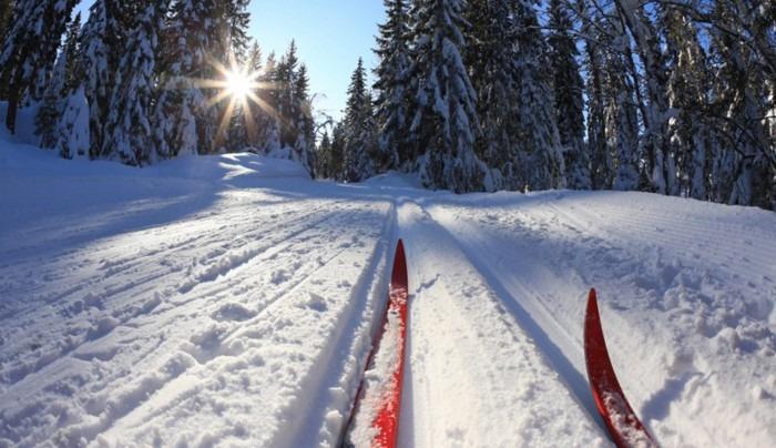Ульяновец 30 километров прошел на лыжах в Самарскую область, чтобы ограбить магазин