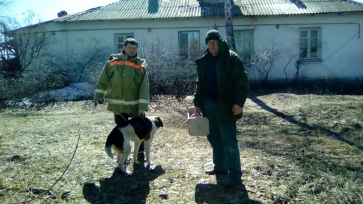 Димитровградские спасатели достали собаку из погреба 2