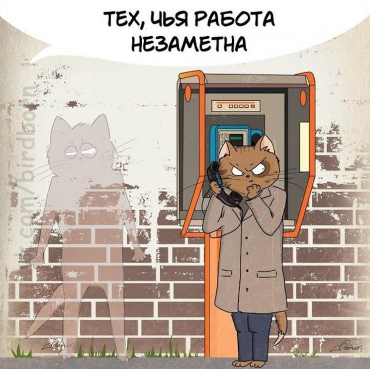 Кот, найденный на странице члена общественной палаты Ульяновской области от Ульяновская местная общественная организация «Клуб любителей кошек «Симба».