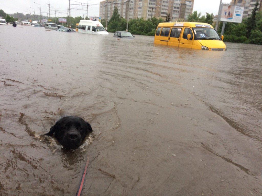 Ъ-Волга: Ульяновск пытается выйти сухим из воды