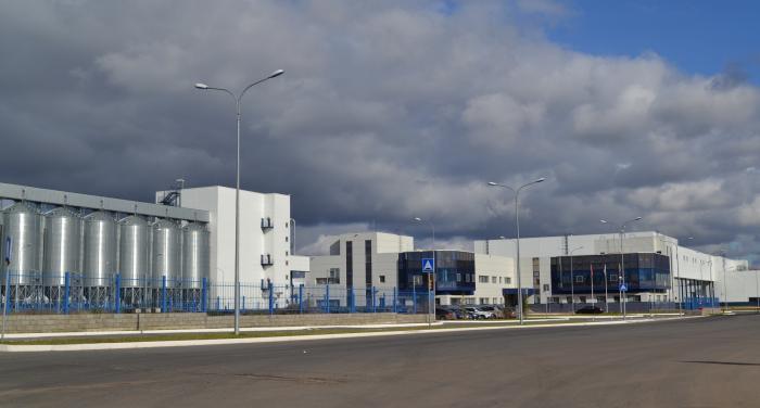 Пивоварни Efes и AB InBev объединят бренды на рынке России