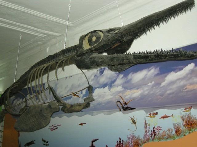 Ундоры динозавры