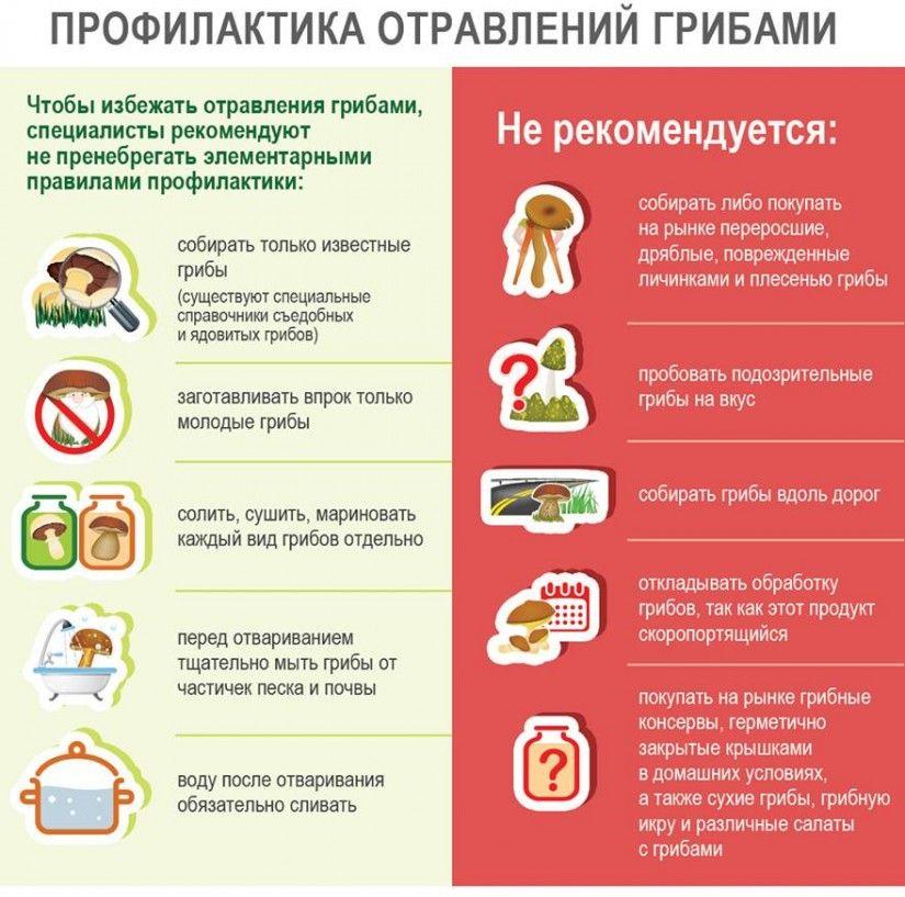 ВУльяновской области девочка попала вбольницу из-за отравления грибами