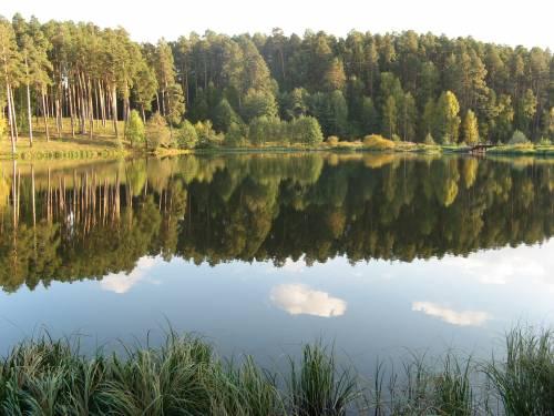 Белое озеро в Николаевском районе Ульяновской области