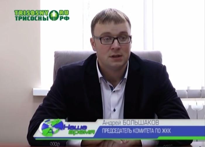 Андрей Большаков, председатель комитета по ЖКК администрации Димитровграда