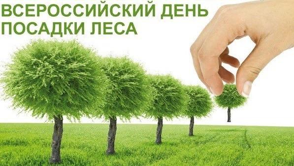 В Ульяновской области пройдёт акция «Всероссийский день посадки леса»