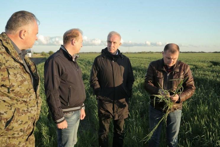 губернатор Ульяновской области посетил крестьянское фермерское хозяйство «Возрождение» в Чердаклинском районе, 26 мая 2018 - 1