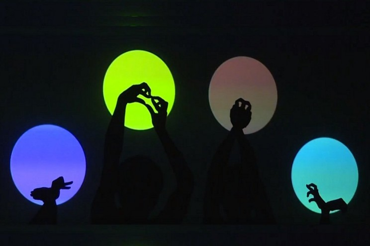 В Ульяновске впервые выступил японский театр теней