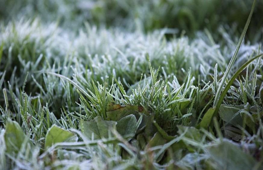В Ульяновской области в первый день лета выпал снег