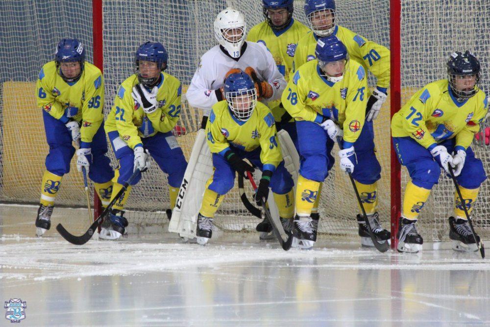 «Волга» может выступить в суперлиге Чемпионата России по бенди