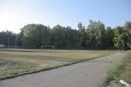 Ульяновский стадион «Локомотив» хотят сделать лучше