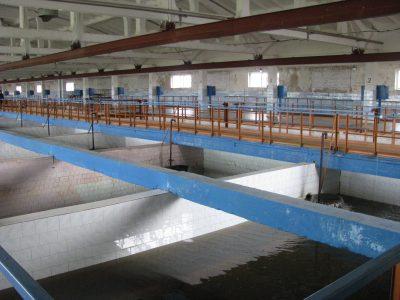 3 и 4 октября жителям Нового города Ульяновска надо запастись холодной водой